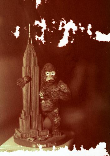 Kodachrome Kong