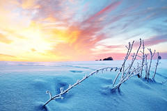 fire and ice (Youronas) Tags: wood pink schnee light red sky orange sun sunlight snow plant cold tree ice nature clouds forest sunrise canon germany landscape bayern deutschland bavaria licht sticks frost december dusk natur pflanze spuren traces himmel wolken frosty franco