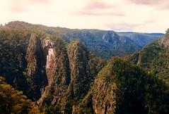 1999 Australia: Wollomombi Falls, NSW #4 (dominotic) Tags: tree green nature water waterfall australia nsw newsouthwales gorge armidale wollomombifalls wollomombiriver plungewaterfall nswnewengland