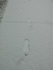 My footprints in the snow