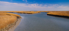 Tidewater By Isle of Palms (emmett.hume) Tags: ocean panorama nature water canon reeds landscape evening vanishingpoint seaside southcarolina wideangle atlantic estuary charleston flats shore canon5d saltmarsh saltwater eastcoast wetland tidalbasin isleofpalms tidewater inlandwaterway naturespotofgold natureandnothingelse moodcreations
