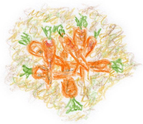 Janis carrots 1
