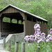 Covered Bridges of West Virginia