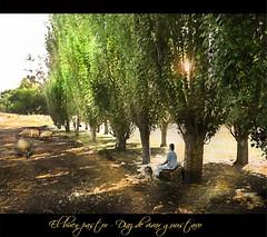 El buen pastor  - Diaz de vivar gustavo (Diaz De Vivar Gustavo) Tags: parque flores argentina de eva buenos aires flor jardin el gustavo alegria pastor calles diaz ranelagh divertido buen vivar hujduk