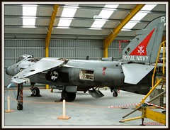SEA HARRIER FA2 ZA176 (Gaz West) Tags: sea vertical museum training plane airplane boat fighter air navy jet royal just after newark arrival theboat bomber naval ark 800 markings wittering trainer picnik nas raf hover harrier jumpjet vtol squadron royalnavy hmsarkroyal cottesmore retiring vstol fa2 rafcottesmore za176 rafconingsby rafwittering navalairsquadron