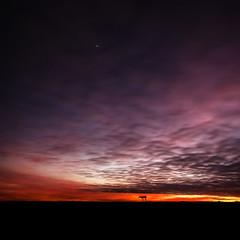 Centrale de Golfech au crpuscule (Cyrco46) Tags: nuage soir crpuscule carr centrale sigma1020 golfech nulaire
