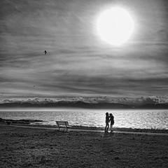 Braving the winter wind (Nick Kenrick..) Tags: winter two blackandwhite bw beach monochrome mono bay wind candid streetphotography vancouverisland fairfield slihouette cloverpoint zedzap