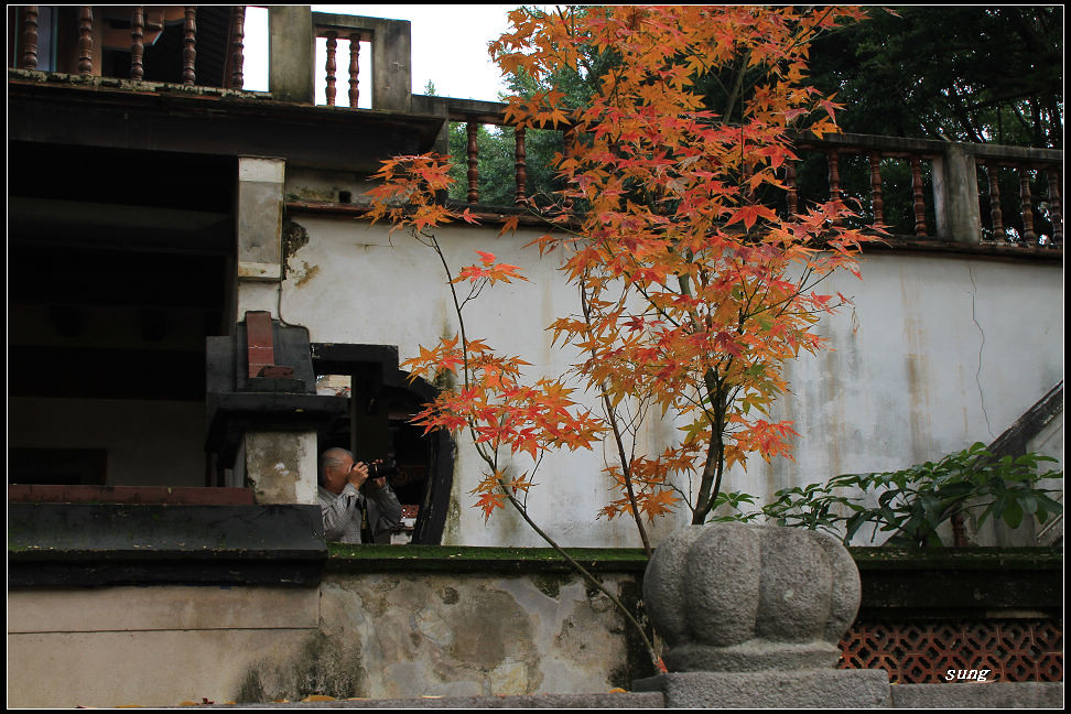 20110114 板橋林家花園 遇見紅葉