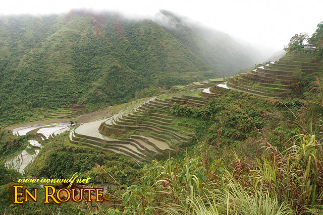 One of the Rice Terraces Stops along the Way