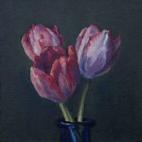 20110112 tulips 6x6
