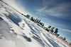 Toronto Slide (tomms) Tags: winter toronto ice skyline frozen cityscape slide lakeontario dutchtilt