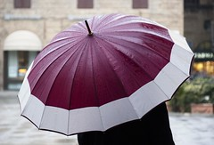 bellombrello (g_u) Tags: florence firenze gu pioggia ugo ombrello piazzasignoria