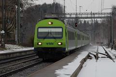 RegioExpress Bern - Neuenburg / Neuchtel mit BLS Re 465 005 - 7 in Rosshusern im Kanton Bern in der Schweiz (chrchr_75) Tags: train de tren schweiz switzerland suisse swiss eisenbahn railway zug locomotive bern christoph svizzera bls bahn treno chemin centralstation fer januar locomotora tog juna lokomotive 1101 lok ferrovia simplon spoorweg suissa locomotiva lokomotiv ferroviaria  2011 locomotief chrigu ltschberg  rautatie  zoug trainen ltschbergbahn  chrchr hurni chrchr75 chriguhurni albumblsltschbergbahn januar2011 albumbahnenderschweiz2011 chriguhurnibluemailch albumzzz201101januar