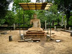 Будда под крышей