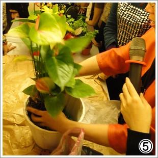 火鶴喜氣慶好年05