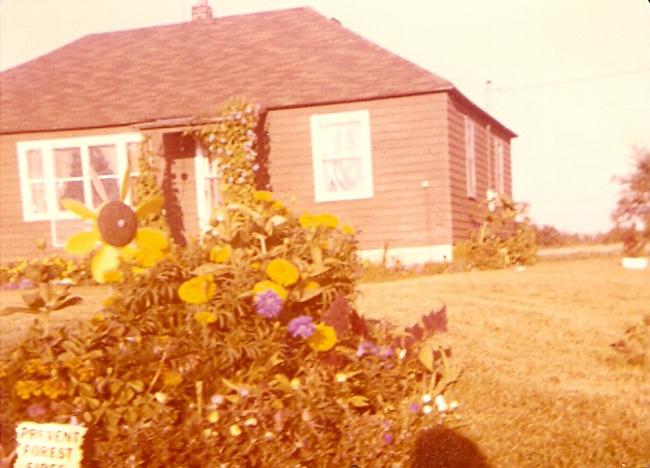 photo of home circa 1981