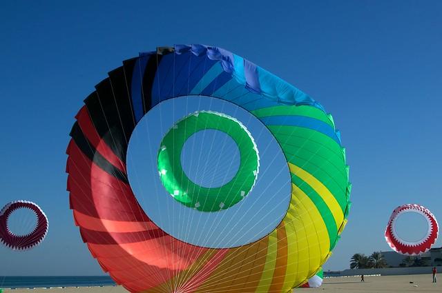 Kites Januray 2011