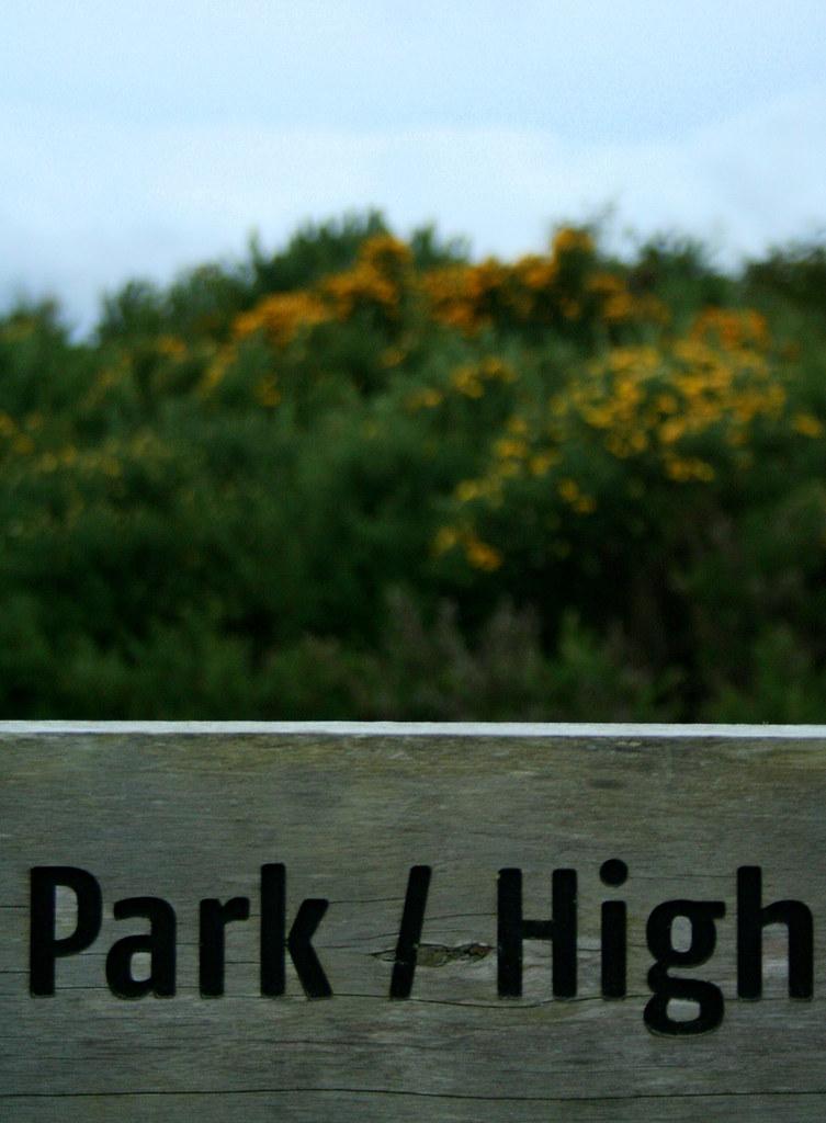 PARK/HIGH 1