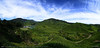 Totally Cameronian (Sir Mart Outdoorgraphy™) Tags: autostitch panorama nature beautiful landscape amazing tea pano awesome panoramas panoramic cameronhighlands breathtaking merge verticalpanorama stitchedimage bohteaplantation bohteacentre automerge sungeipalas vertorama sgpalas penangflickr d7000 sirmart outdoorgraphy bohteacenter cameronhighlandteaplantation teacupteasachet bohteamalaysia pusattehbohcameronhighlands
