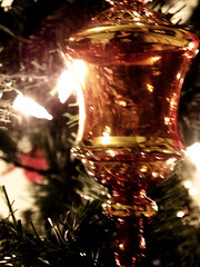 Golden (shawnpau) Tags: christmas old flowers blue nature yellow sepia photo cool interesting fireworks amature