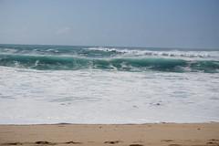 DSC05184 (neilreadhead) Tags: awt1 hawaii oahu waimeabay