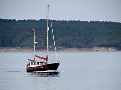 3958 Motor yacht in Llanddwyn Bay (Andy panomaniacanonymous) Tags: 20160907 bbb boat cruise llanddwynbay mmm motoryacht roundtrip ynysmon yyy