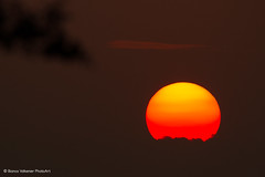 Fireball! (Bianca Valkenier PhotoArt) Tags: lowsun sun nature sunset sky eveninglight evening zon avondzon laagstaandezon red redsky orange yellow bigsun dodewaard gelderland nederbetuwe betuwe netherlands
