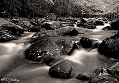 An Unchained Melody (P. Oglesby) Tags: autumn landscapes elkmont thehighlander godlovesyou coth greatsmokymountainsnp thelittleriver mygearandmepremium mygearandmebronze mygearandmesilver