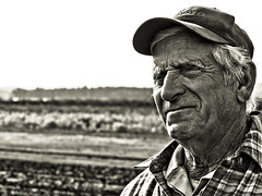 Sonny Bialas from Bialas Farms (alan shapiro photography) Tags: portrait canon farmers exploring farmer aging wandering 2010 roaming hardworking alanshapiro workingtheland ashapiro515 canont1i ©2010alanshapiro alanshapirophotography bialasfarm thegreatamericanfarm portraitsoffarmers