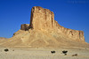 Tuwaiq Mountains - Explore Front Page (TARIQ-M) Tags: mountains tree landscape desert explore camel frontpage riyadh saudiarabia canonefs1855 الرياض canonef70200mmf4lusm المملكةالعربيةالسعودية canon400d طلح tuwaiq tuwaiqmountains جبالطويق جبلطويق