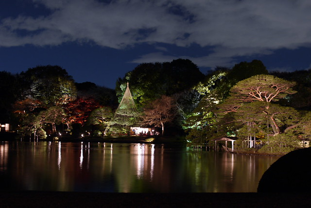 Night of Rikugien Daimyo-Garden
