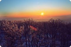 ice (N6ra) Tags: trees winter sunset snow ice lights budakeszi