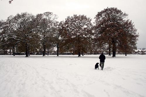 Snow-Nov_10_4