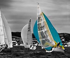 Red Rules 1 (DesdemonaAcida) Tags: vela regata santamarinella sngm