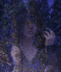 (christina.bendinger) Tags: blue trees light selfportrait snow girl face leaves yellow hands branches overlay lips pale evergreen ghostly knuckles earthly vneck christinabendinger