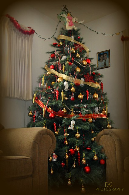 Our 8 feet Christmas tree 2010