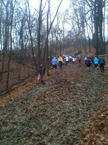 Pere Marquette Endurance Trail Run