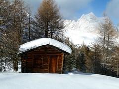 val di fassa (martem@r) Tags: italien schnee italy snow mountains alps italia unesco neve neige alpen alpi sci trentino italianalps dolomiti rifugio baita catinaccio valdifassa ciampedie alperna vigodifassa martemar1 italienskaalperna gettyholidays2010 martemr