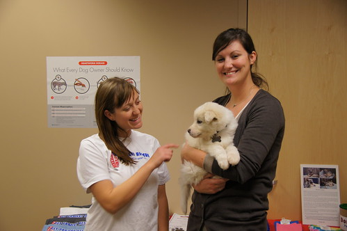 Pet Project Rescue at Minneapolis Veterinary Hospital