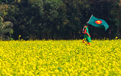 Bangladesh [...Jessore, Bangladesh...] (Sopnochora) Tags: life yellow freedom run independence bangladesh victoryday villagegirl 16thdecember bijoydibos