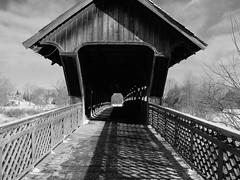 Covered Bridge (David Allan Barker) Tags: bridge winter ontario guelph