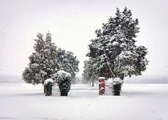 White Space (Sky Noir) Tags: travel winter snow weather landscape virginia day va rva wx skynoir bybilldickinsonskynoircom pwgen