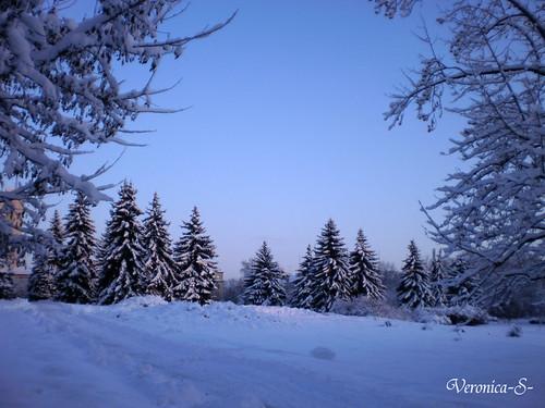 Зима в нашем городе 5303796941_29fd1e2b6d