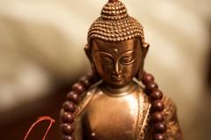 Sakyamuni Buddha and Mala (vociferous.) Tags: beads buddha buddhism mala rosewood prayerbeads sakyamuni buddhistrosary
