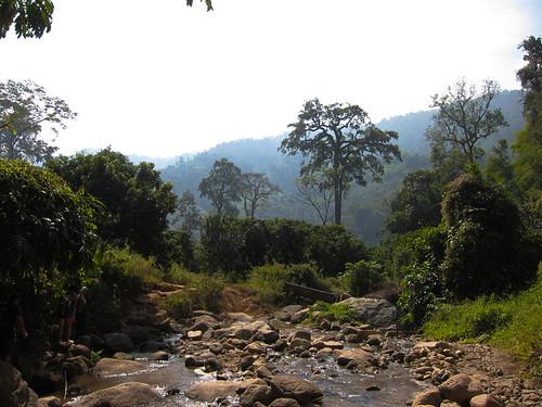 Chiang Mai trek, day 60