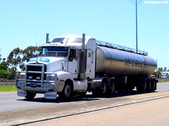 photo by secret squirrel (secret squirrel6) Tags: trees moving awesome trafalgar bluesky rails trailer bonnet kerb slope westbound pathway tanker handles kw gippsland kenworth mudflaps princeshighway cabover bullbar ruralaustralia mccolls triaxle bogiedrive worldtruck secretsquirreltrucks