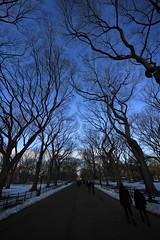 Central Park 37 (Nick Mulcock) Tags: park new york city nyc fall canon mall is bokeh d centralpark central center telephoto angels 200 l rockefeller 8mm 70 70200 60 2010 816 60d flickraward treesdiestandingup theacademytreealley mygearandmebronze mygearandmesilver