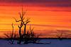 _MG_9361 (Wai Cheong Chan) Tags: lake sunrise landscape menindee pamamaroo andychan