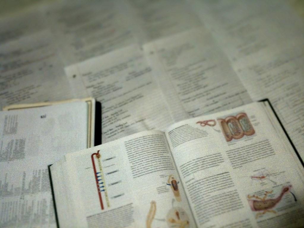 Grade 12 Biology Notes