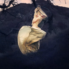 the hunted (brookeshaden) Tags: tree field dress hill victorian covered obstructed hunted brookeshaden